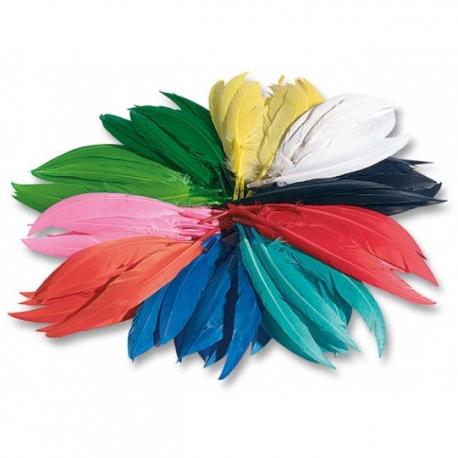 Plumes indiennes colorées - 100 g
